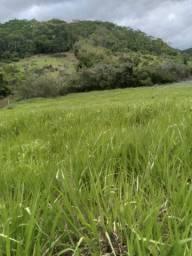 Vendo terreno em Anta/ Sapucaia RJ