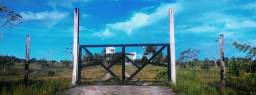 Oportunidade: Linda fazenda 236 Hectares no Amapá - margem da rodovia