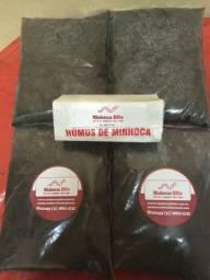 Húmus puro de minhocas - Produzido por minhocas importadas