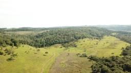 Título do anúncio: Fazenda com 95 hectares em Ponte Alta-SC
