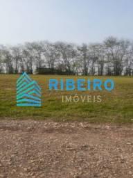 Título do anúncio: Terreno 438 m²/ Cond. Ninho Verde1 - Porangaba, SP