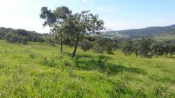 Fazenda de 21 Alqueires, no município de Anicuns/Go R$ 2.750 MI