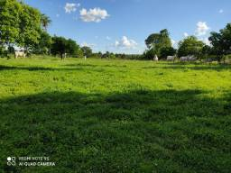 Fazenda 367 hectares em Gurupi