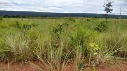 Vendo Fazenda com 1.523 Hectares na região do Manso