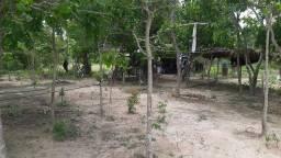 Lote na beira do rio araguaia do lado do Mato Grosso