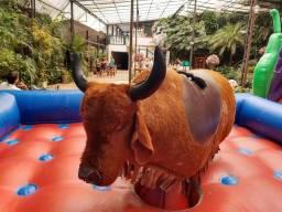 Futebol de sabão, touro mecânico, pula pula para locação