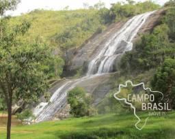 Título do anúncio: Campo Brasil Imóveis, realizando seu sonho rural! Fazenda de 84.4 hectares em Carvalhos-MG