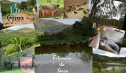 Fazenda de 440mil m2 com Eucalipto no valor de 150mil