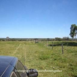Fazenda a venda, 1588 hectares