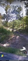 Chácara Documentada a Beira do Asfalto (Reflorestamento Pupunha)