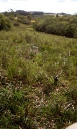 15 Hectares no 1 Distrito de Canguçu