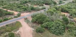 Vendo sitio em barreirinhas/MA, povoado CABECEIRA DO CENTRO