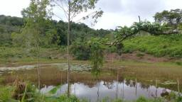 Fazenda em Una. 180 hectares.