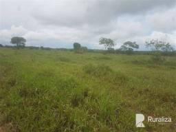 Fazenda situada em região nobre do Tocantins