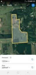Área para Fazenda Toda Plana em São João do Itaperiú, Aceita Parte em Permuta