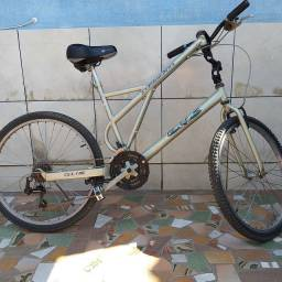 Bicicleta diferenciada