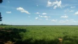 Título do anúncio: Fazenda 1.115 ha em Itacajá TO