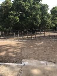 Terreno em Paudarco pi