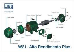 Peças para motores elétricos originais Weg