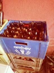 10 caixa de cerveja com casco