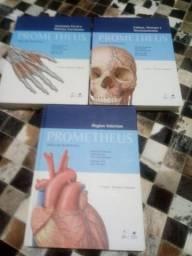 Livros Anatomia prometheus