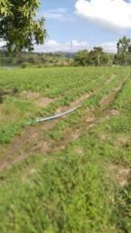 Terreno ão lado da barragem de Camocim pe