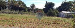 Título do anúncio: Terreno à venda, 1200 m² por R$ 83.000,00 - Zona Rural - Regente Feijó/SP