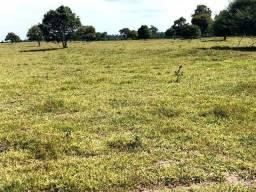 395 Hectares,175 hectares pastagens,boa água,Barra do Bugres-MT. Aceito Casa Tangará