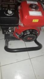 Vendo Motor a gasolina
