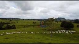 Fazenda à venda, por R$ 5.265.000 - Zona Rural - Ji-Paraná/RO