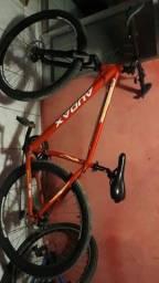 Bike Audax aro 29