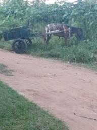 Troco carroça aro 21 eixo perereca Só a carroça