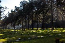 Venda de Jazigo Cemitério Jardim da Colina