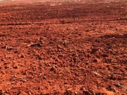 47,50 alqueires,região de tangará, terra roxa Toda aberta em lavoura,