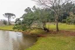 Terreno à venda em Bom retiro, Pato branco cod:156517