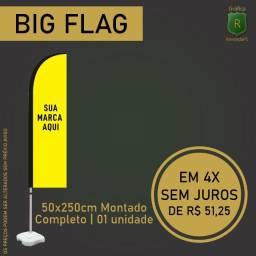 Big flag wind banner