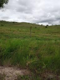 Fazenda municipio de são Francisco es, 19 alqueires