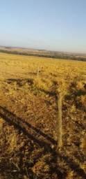 VENDA | Fazenda, com 1 quartos em ZONA RURAL, CANARANA