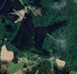 Área com 242.000 m2 com Reflorestamento em Rio Negrinho/ SC