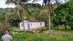 Sítio - venda ou troca por sítio ou casa em Maceio