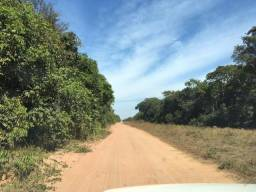 1875 hectares,cerrado,100 km BR-163,Mutum,Diamantino?MT,Aceito Permuto Mutum,Cuiabá