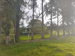 Fazenda interior de São Paulo