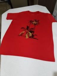 Camisa malhão da Osklen P, M, G e GG
