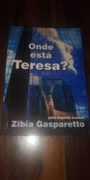 Livro: Onde está Teresa?