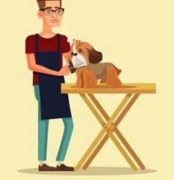 Título do anúncio: Tosador de animais domésticos