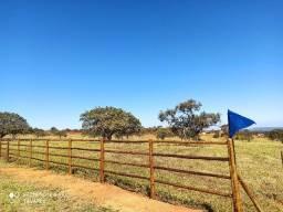 Fazenda de 2 hectares a apenas 48 km de BH - R$25.000,00 + Parcelas