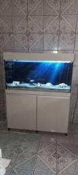 Aquario 288 litros TOP