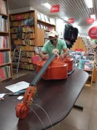 Lutheria zanardini Rodrigues construção e restauração