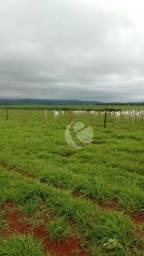 Fazenda à venda, 885 Alqueires - Coxim /MS