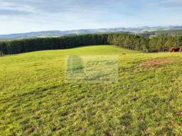 Terreno Rural medindo 65.3 hectares em Campo Belo do Sul